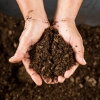 Statement on the Introduction of the COMPOST Act