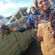 NSR Master Composter Course in Baltimore