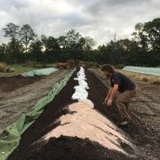 Webinar: Integrating Composting Into Your Farming Business with Ellen Polishuk