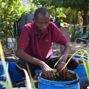 Compost Climate Connections Webinar Series: Using Compost for Ecological Sanitation in Haiti to Mitigate & Adapt to Climate Change