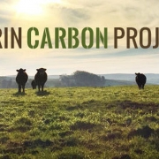 Compost Climate Connections Webinar Series: Carbon Farming with Compost
