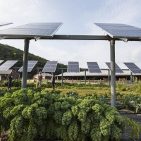 Massachusetts's Community Solar Program