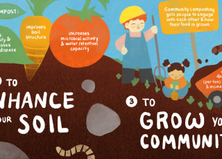 Infographics: Compost for a Better Planet