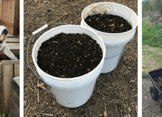 Webinar: Detailing Successful Local Government Home Composting Programs