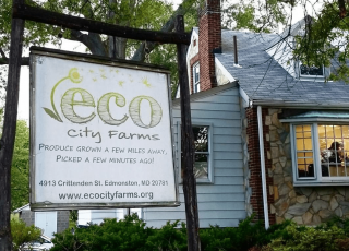 Composting Helps Nourish Communities in the U.S. and Beyond (feat. ECO City Farms)
