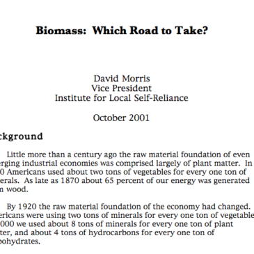 Report: Biomass – Which Road to Take?