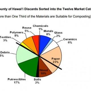 Hawaii County report excerpt