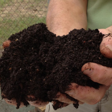 The Benefits of Composting & Compost Use