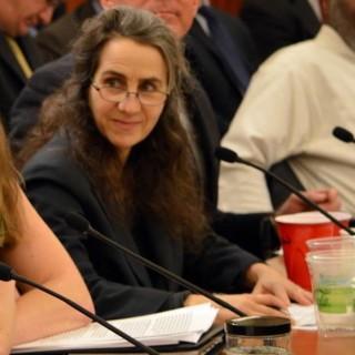 Brenda at DC PS hearing 1-8-14