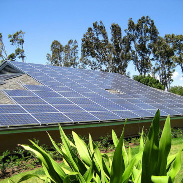 Why is an Island Electric Utility Hindering Incredibly Cost-Effective Solar?