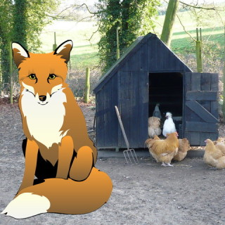 fox in henhouse - Phil Catterall (wikipedia) and Nemo (Pixabay)