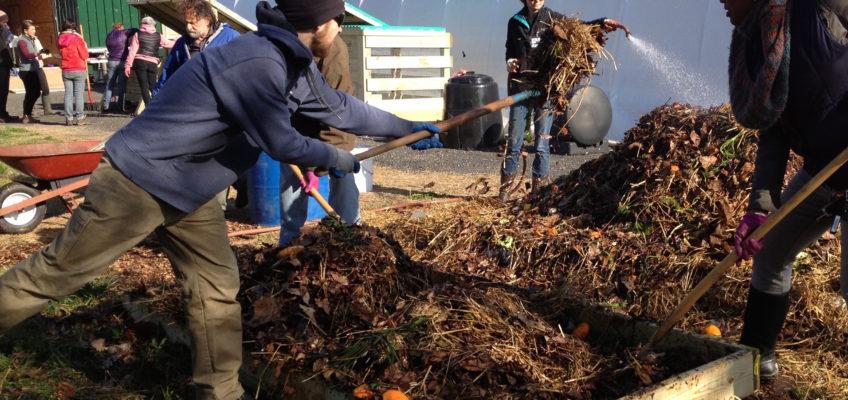 Neighborhood Soil Rebuilders in Action
