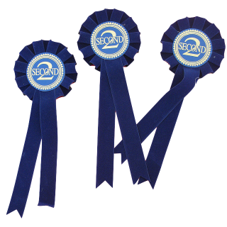 second prize ribbons - flickr Scott