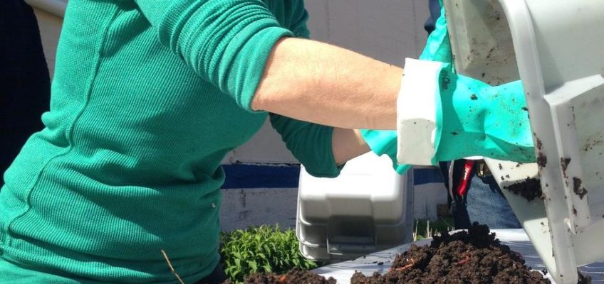 ILSR Leading Free Worm-Powered Composting Workshop As Part of DC Food Recovery Week of Action
