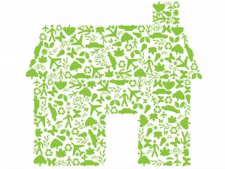 "Green ""Eco"" House"