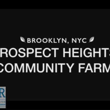 Video: Prospect Heights Community Farm Community Composting Feature