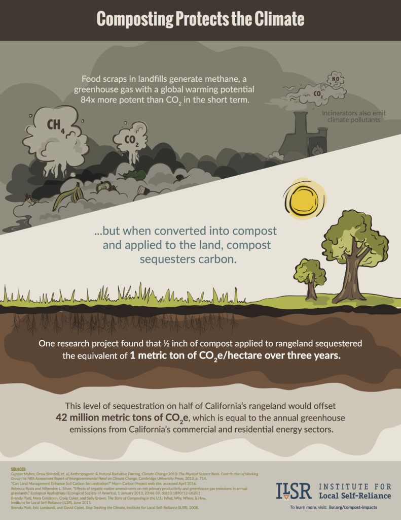 compost-infographic-18x23-pg3