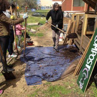 compost-mix-between-bins-shovel-full