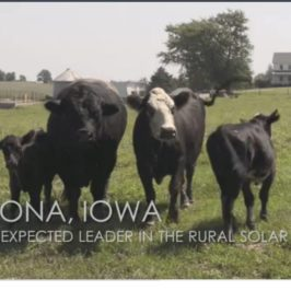 Video: A Solar Leader Emerges in Rural Iowa