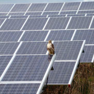 Unlocking Universal Access to Community Solar