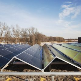 Residential Subscribers in Focus as Minnesota Weighs Community Solar Incentives