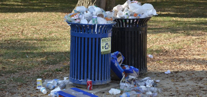 A Look Into CERO Cooperative & the Waste Stream