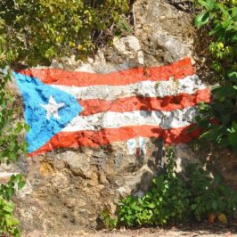 Can Puerto Rico Overcome a Colonial Past to Build a Greener Grid?