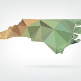 North Carolina Local Media Focuses On Frontier Failures