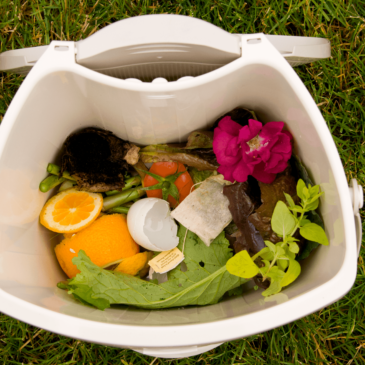 Release: New Report Argues Home Composting Is Vital to Local Waste Reduction Strategies