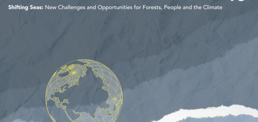 Working Partner Update: Environmental Paper Network