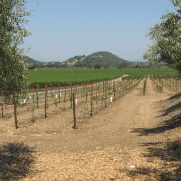 California Bill Aims to Reduce Rural Broadband Barriers