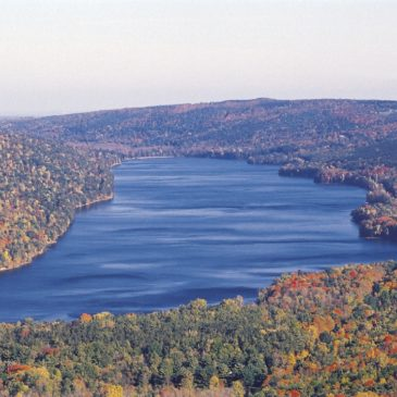 In the Finger Lakes of New York, a Garbage Incinerator Proposal Comes Under Fire