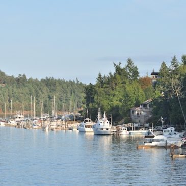 Washington State Island Community Gains Connectivity from Local Provider