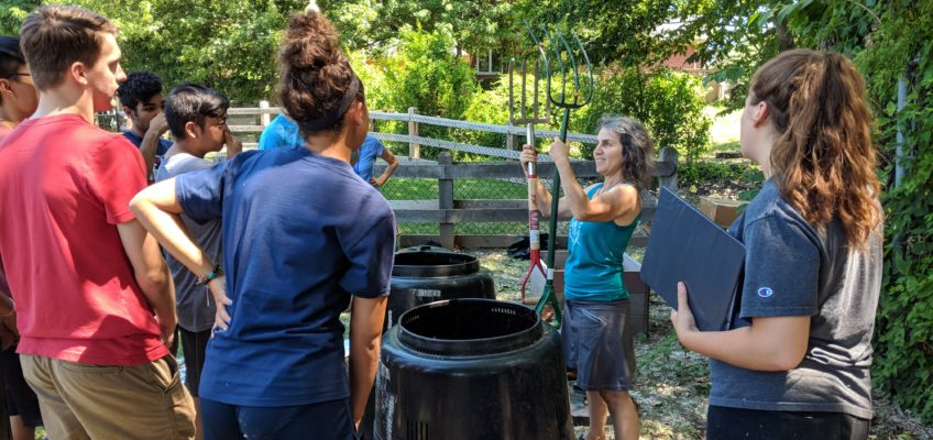 Hot Composting Classes in DC This Fall