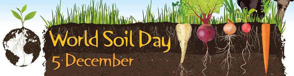 2018 World Soil Day: Compost Adds Organic Matter for Healthy Soil