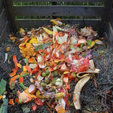 How Community Composting Disrupts Big Waste (Episode 61)