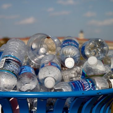 A collection of plastic water bottles