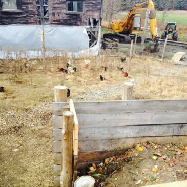 Photo of an on-farm static pile composting system with visible food scraps and chickens browsing in the surrounding area
