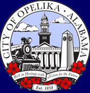 Opelika Speaks From Experience: Support Local Authority!
